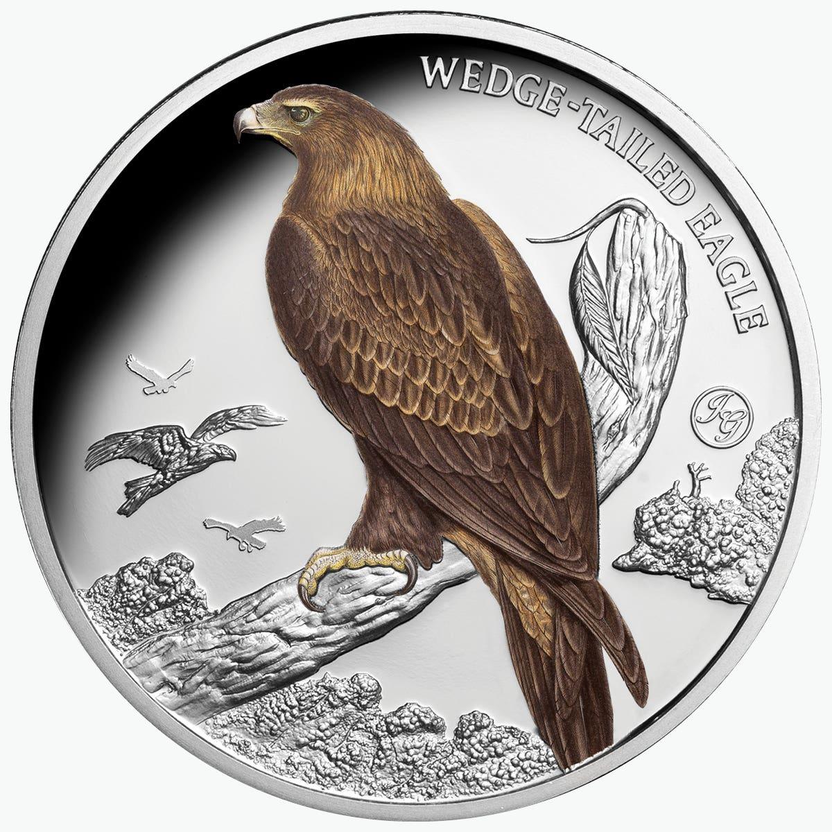 Gould Birds Budgerigar